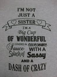 Funny Sibling Quotes Awesome 48 Funny Sister Quotes And Sayings With Quotes About Brothers