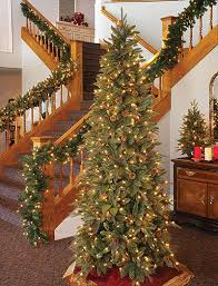 Find All Types Of Christmas Trees At The Home DepotTypes Of Christmas Tree Lights