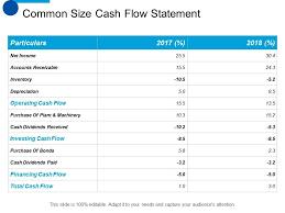 Cash Flow Summary Template Common Size Cash Flow Statement Ppt Summary Designs Download