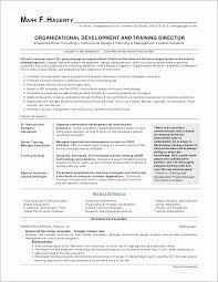 Resume Examples For Beginners Custom Resume Examples Basic Simple Resume Examples For Jobs