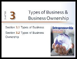 types of business ownerships effective 3 types of business ownership policy counsel