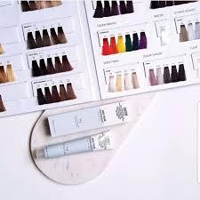 Nak Colour Chart Nak Hair Colour Chart 2019