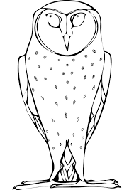 Small Picture Barn owl printable coloring pages