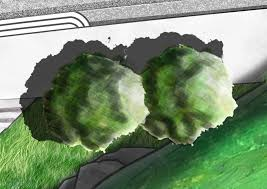Small Picture BAHonsGarden Design Year 3 Rendering practice and Photoshop
