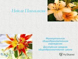Отчёт по неделе психологии в школе Александровск Отчёт по неделе психологии в школе
