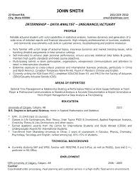 Example Good Resume Amazing Example Of A Great Resume Kappalab