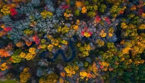 best places to see fall colors in usa