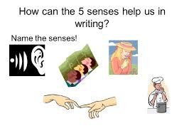 senses writing objectives identify the four writing prompts  4 how can the 5 senses