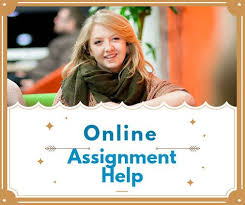 best assignment writing service ideas political assignment help upto 30% discount on assignment writing services call now
