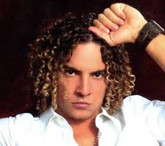 david bisbal with his long curly hair