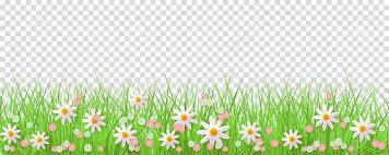 grass transparent background. Spring Border With Green Grass And Flowers On Transparent Background. Stock  Vector - 98178933 Background C