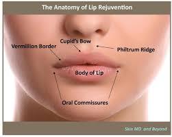 mouth rejuvenation plano tx lip