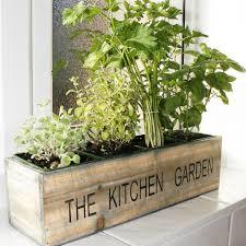 Kitchen Garden Kit Buy Gift Set Mediterranean Kitchen Garden Kit