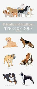 Dog Breed Chart With Names 25 List Of All Time Best Types Of Dog Breeds With Pictures