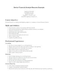 Senior Financial Analyst Sample Resume Skinalluremedspa Com