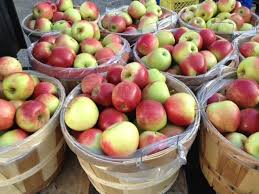 Image result for bushel of apples picture