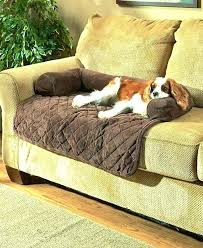 dog couch bed extra large sofa beds design ideas chair diy dog couch