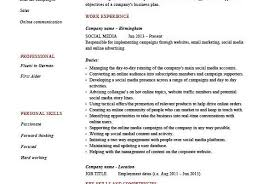 Media Planner Resumes 1 Media Planner Resume Templates Try Them Now Myperfectresume Word