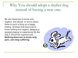 the importance of adoption