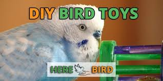 diy bird toys make easy homemade toys out of household items parrot safe