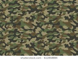 Camouflage Pattern Impressive Camouflage Pattern Images Stock Photos Vectors Shutterstock