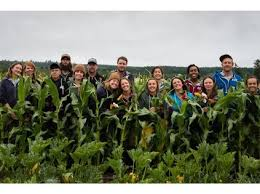 Image result for Farm Workers Needed