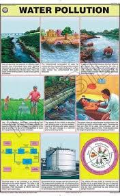 Types Of Water Pollution Chart Water Pollution For Man Environment Chart