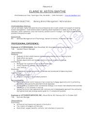 Retail Banking Executive Resume Examples Objectiveirtren Com For