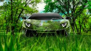 lamborghini aventador front crystal nature car