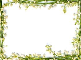 Flower Powerpoint Real Floral Frame Backgrounds For Powerpoint Flower Ppt