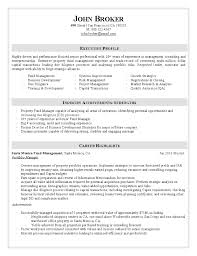 sample resume portfolio
