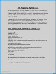 Ceo Resume Sample Doc Valid Building A Awesome Resume Examples