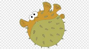 pufferfish drawing painting color