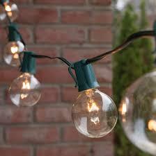 Mini Globe String Lights Battery Operated Globe String Lights Clear G50 Bulbs Green Wire Yard Envy
