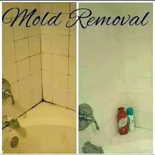 remove mold from shower remove mold from shower caulk remove mold from shower caulk removing mold