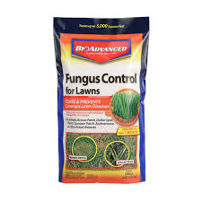 Image For Lawns Fungus Control For Lawns Bioadvanced