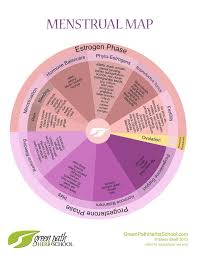 Menstrual Cycle Phases Chart Menstrual Cycle Chart Period Problems Charting Your