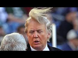 Image result for president trump hair