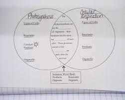 Big Ideas In Biology Chart Answers Cellular Respiration Diagram Worksheet 100 101 Cellular