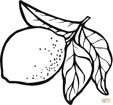Small Picture Lemons coloring pages Free Coloring Pages
