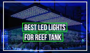 best led lighting for aquariums