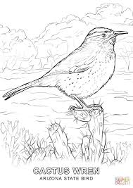 Free printable coloring pages for children that you can print out and color. Wisconsinstate Bird Coloring Page Coloring Home