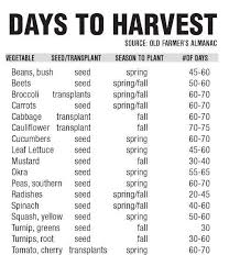 Vegetable Days To Maturity Chart Seasonal Gardening Tips Companion Planting For Late Spring