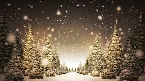 christmas tree snow wallpaper hd. Christmas Trees In Snow HD Wallpaper On Tree Hd