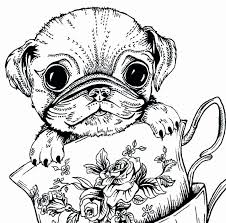 Pug Coloring Pictures Astonising Free Printable Coloring Pages Cute