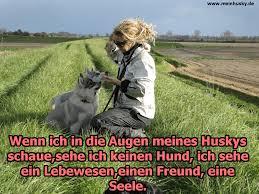 Husky Zitate Und Sprüche