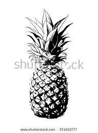 pineapple drawing. pin drawn pineapple simple #9 drawing