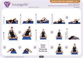 vinyasa hatha beginners cl 2