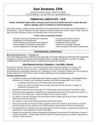 Cfo Resume Example Free Resume Templates