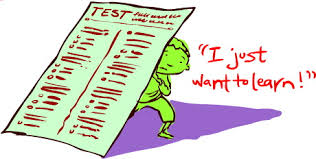 Image result for standardized testing results